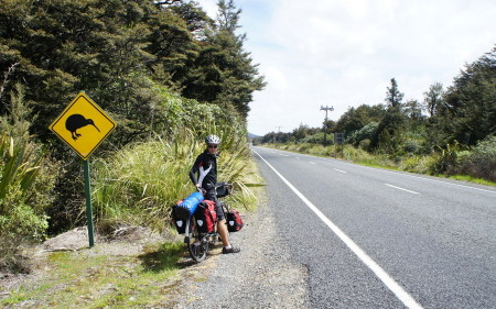 Why did the Kiwi cross the road?
